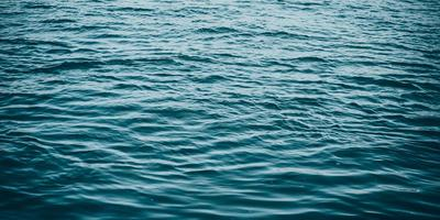 गंगा नदी अपडेट - गंगा और मानव-शरीर में जीवन्त समरूपता
