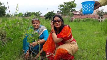 वृक्षारोपण महाकुंभ के जरिये धरती को दिया हरियाली का उपहार