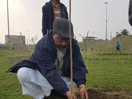 अमर उजाला द्वारा आयोजित वृक्षारोपण कार्यक्रम में शिरकत