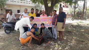 विश्व पर्यावरण दिवस के अवसर पर गुजैनी में किया वृक्षारोपण