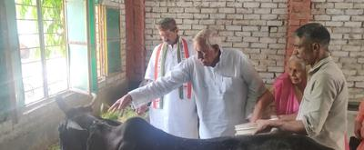 पंडित रामजी त्रिपाठी - दिव्यांग गौधाम के मध्य मनाया पूर्व सांसद श्री श्याम बिहारी मिश्रा जी का जन्मदिन