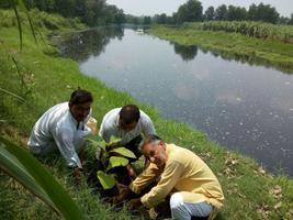 ईस्ट काली रिवर वाटर कीपर - गंगनहर से पुनर्जीवित होगी काली नदी