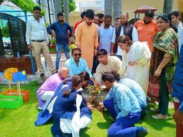 शिवपाल सावरिया- ममता मॉडर्न स्कूल में वृक्षारोपण कर हरियाली बचाओ अभियान में दिया सहयोग
